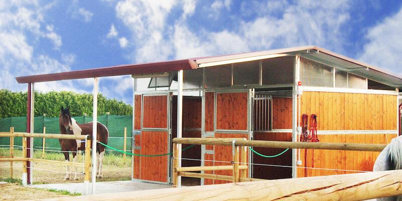 Box cavalli offerte